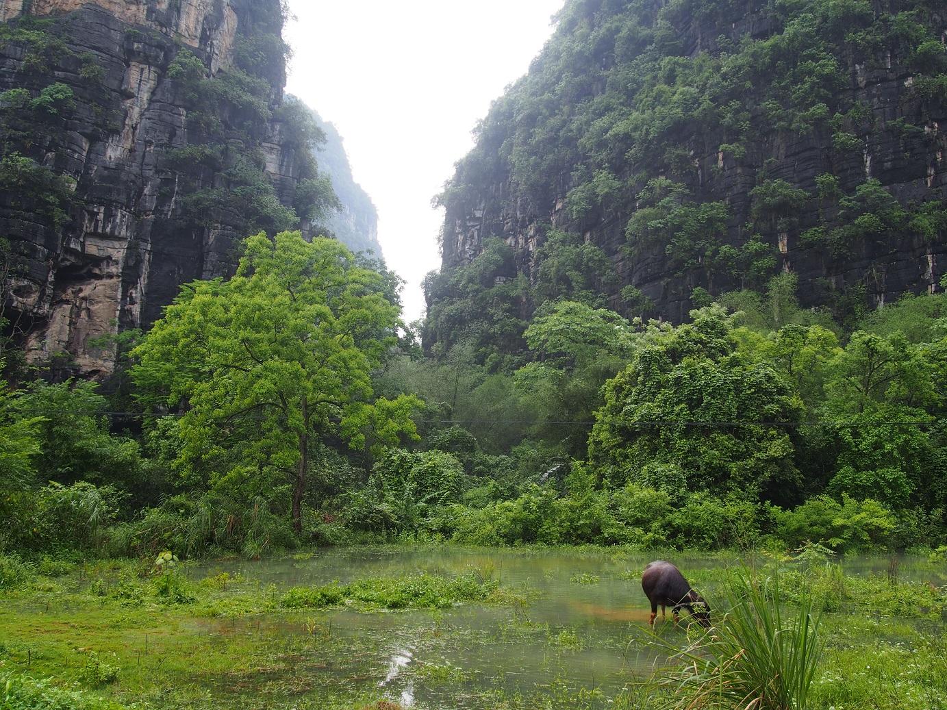 čínsky vidiek